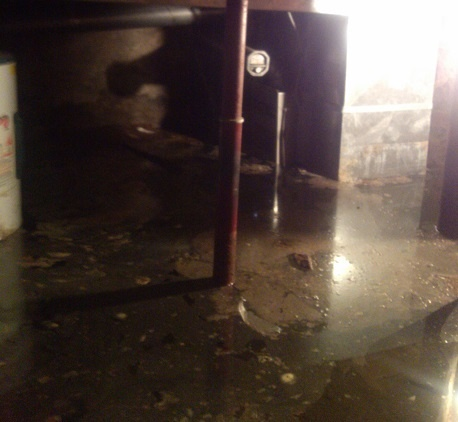 basement water damage in illinois