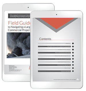 field-guide-ipad-mockup-FIXED